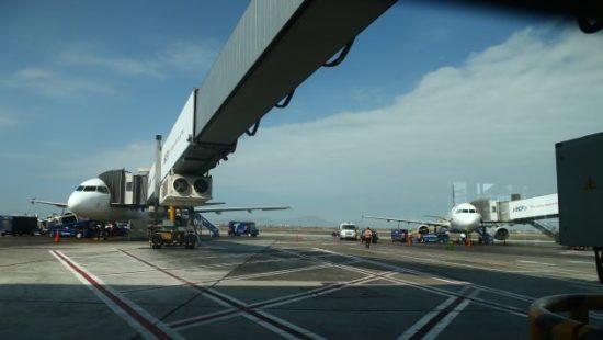 El 98% de las Aerolíneas Cumplió con su Itinerario de Vuelos tras Reanudación del Transporte Aéreo